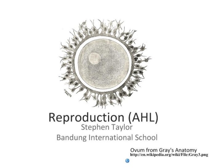 Reproduction (AHL)