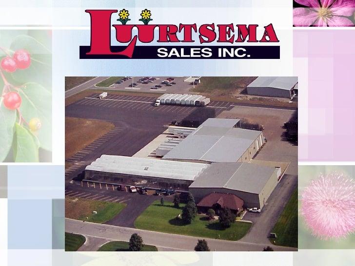 Luurtsema Sales Introduction