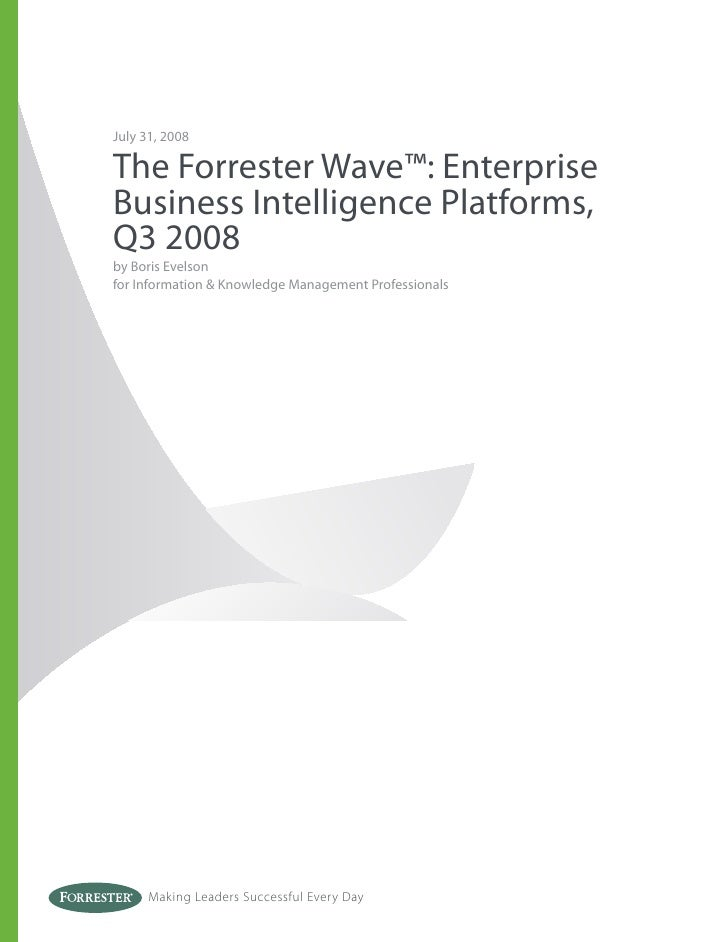 The Forrester Wave Enterprise Business Intelligence Platforms, Q3 2008