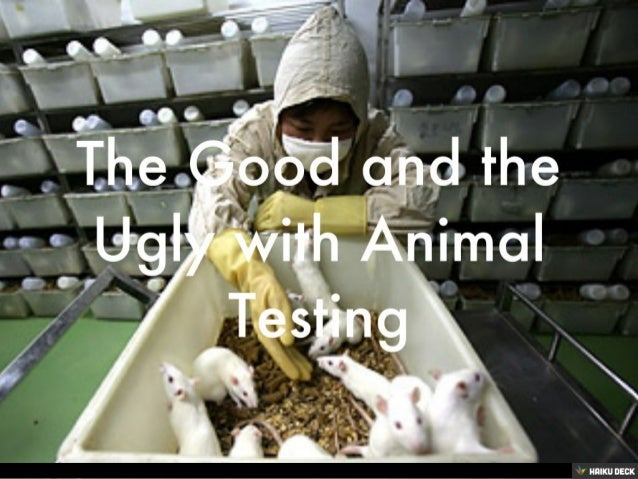 animal testing is it good essay Animal testing animal testing has been around since at least 500 bc and in the last 100 years most medical breakthroughs regarding treatments and life-saving cures to ailments have resulted from research using animals, according to the california biomedical research association.