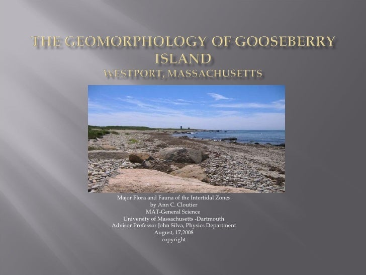 Major Flora and Fauna of the Intertidal Zones by Ann C. Cloutier MAT-General Science  University of Massachusetts -Dartmou...