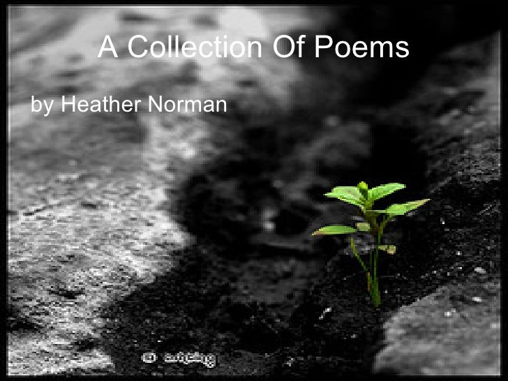 A Collection Of Poems <ul><li>by Heather Norman </li></ul>