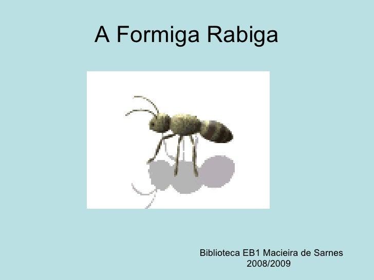 A Formiga Rabiga Biblioteca EB1 Macieira de Sarnes 2008/2009