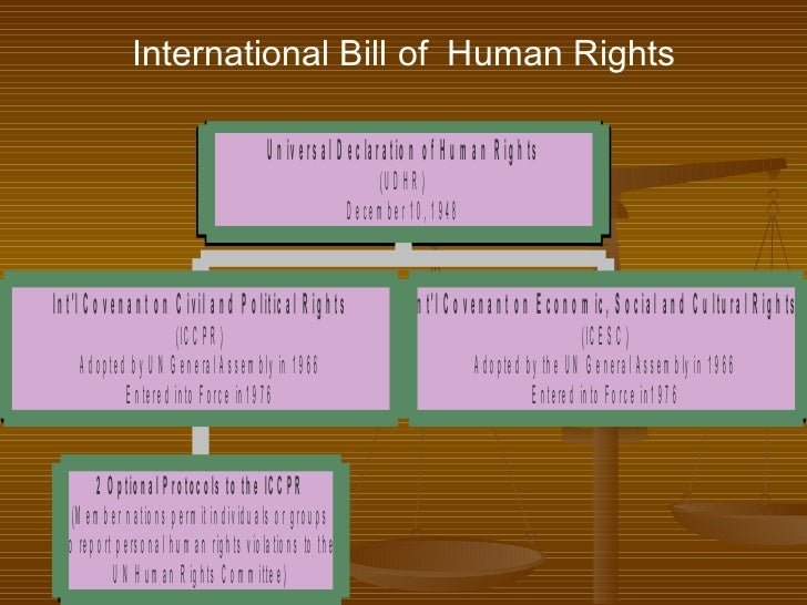 international investment agreements human rights and Investment agreements and human rights international human rights obligations in areas of the business and human rights context, such as investment.