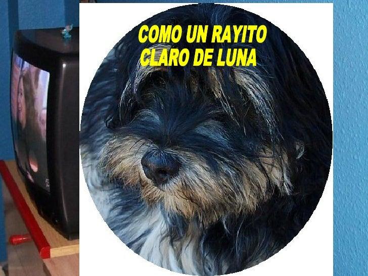 COMO UN RAYITO CLARO DE LUNA
