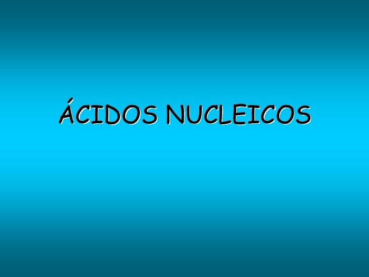 A. nucleicos 2010-2011 new