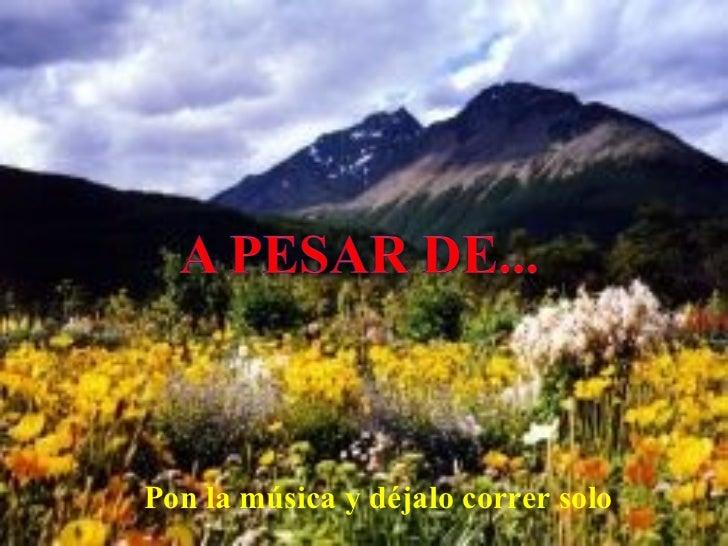 A Pesar De...(Cmp)
