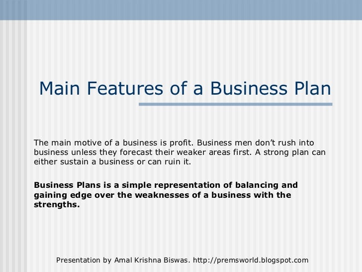 Business plan features