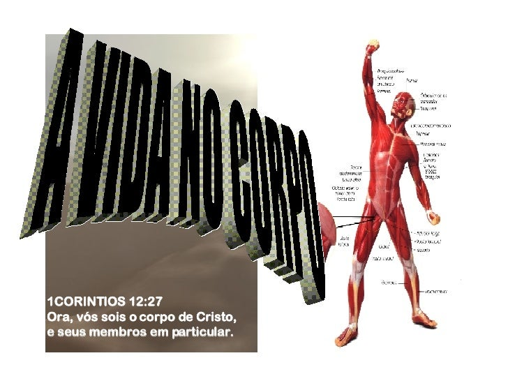 A VIDA NO CORPO 1CORINTIOS 12:27  Ora, vós sois o corpo de Cristo,  e seus membros em particular.