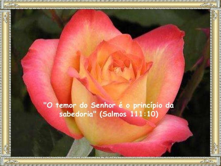 """""""O temor do Senhor é o princípio da    sabedoria"""" (Salmos 111:10)"""