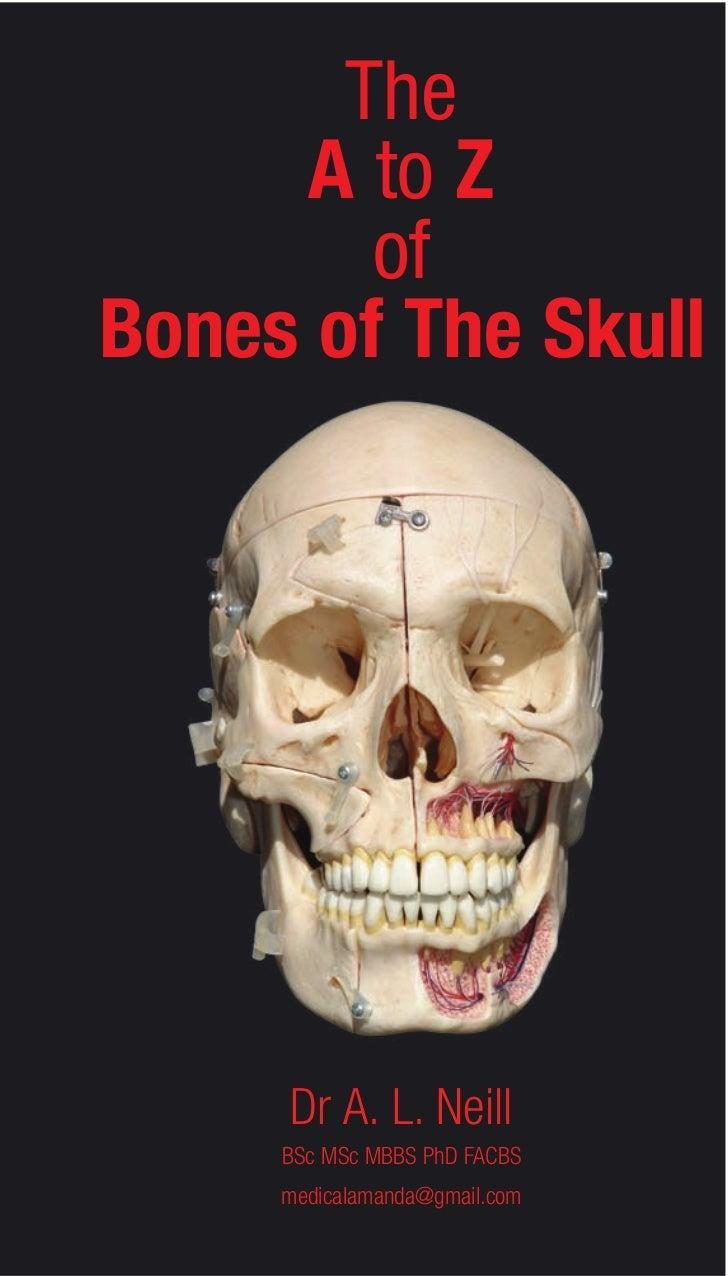A z-bones-of-the-skull