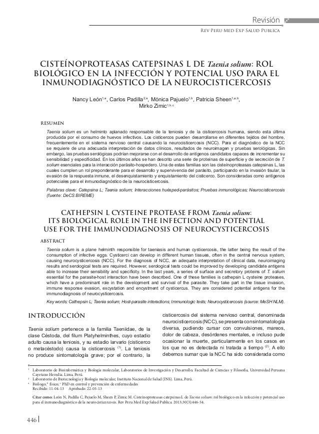 446 CISTEÍNOPROTEASAS CATEPSINAS L DE Taenia solium: ROL BIOLÓGICO EN LA INFECCIÓN Y POTENCIAL USO PARA EL INMUNODIAGNÓSTI...