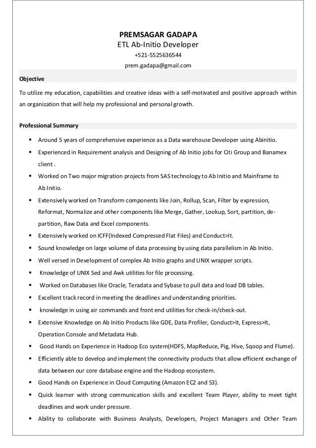 Ab initio data profiler resume