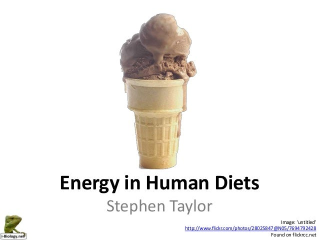 Energy in Human Diets    Stephen Taylor                                                      Image: untitled              ...
