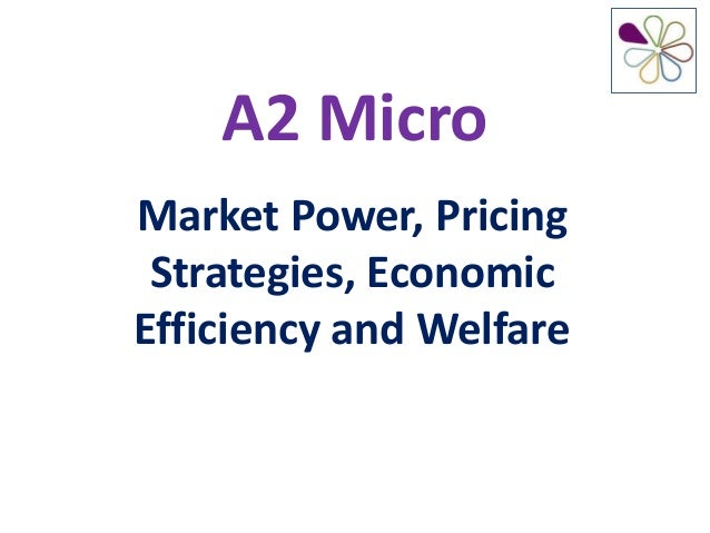 A2 MicroMarket Power, Pricing Strategies, EconomicEfficiency and Welfare