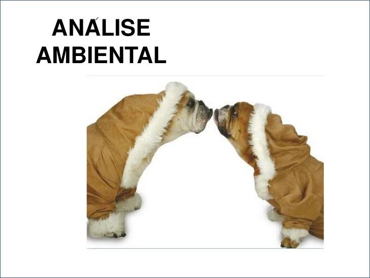 ANALISE AMBIENTAL<br />