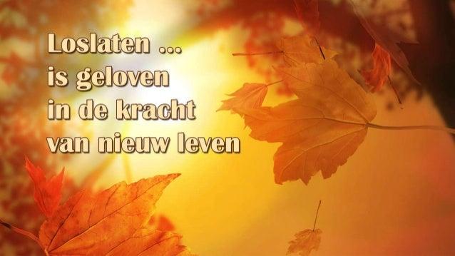 Loslaten is geloven in de kracht van nieuw leven (Allerheiligen 2013)