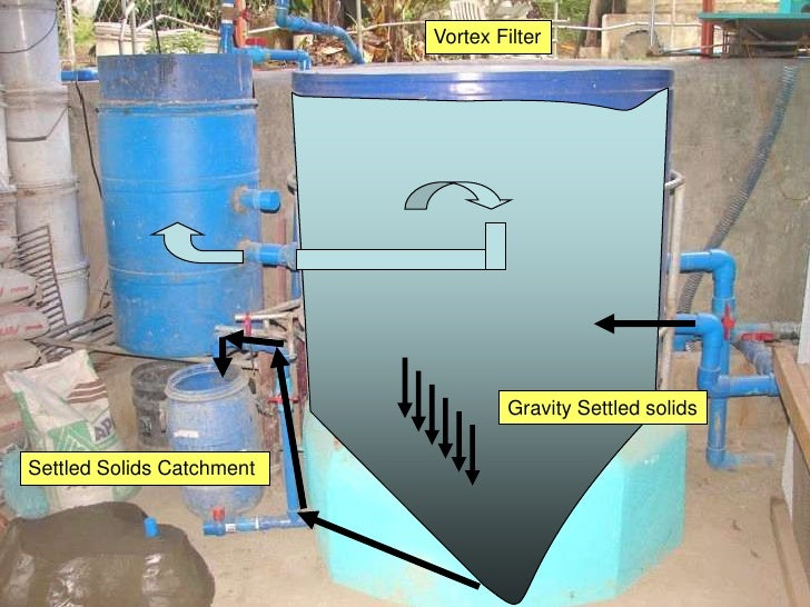 A3 aquaponics filter feed and fish for Feed and grow fish free no download