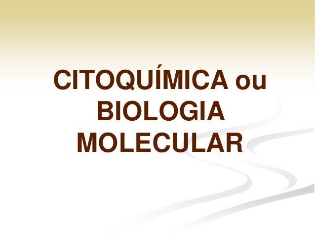 A4 bioquímica celular.citoquimica