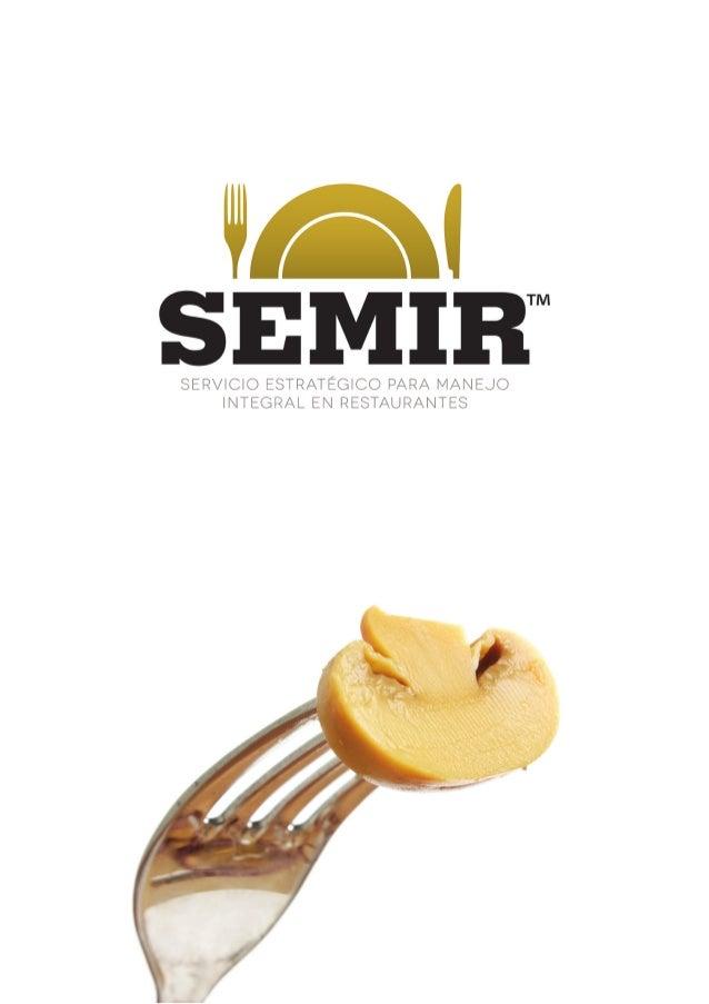 SEMIR-1-1