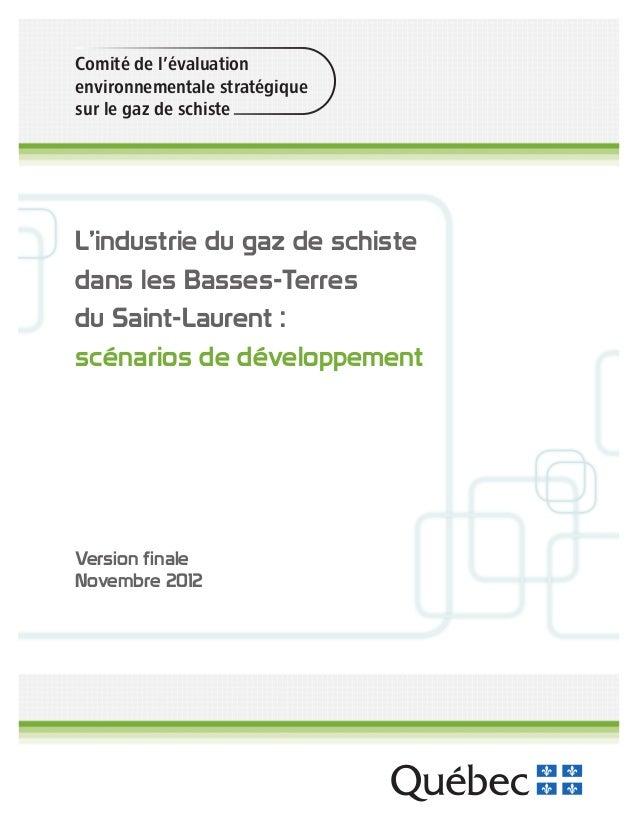 Comité de l'évaluation environnementale stratégique sur le gaz de schiste L'industrie du gaz de schiste dans les Basses-Te...