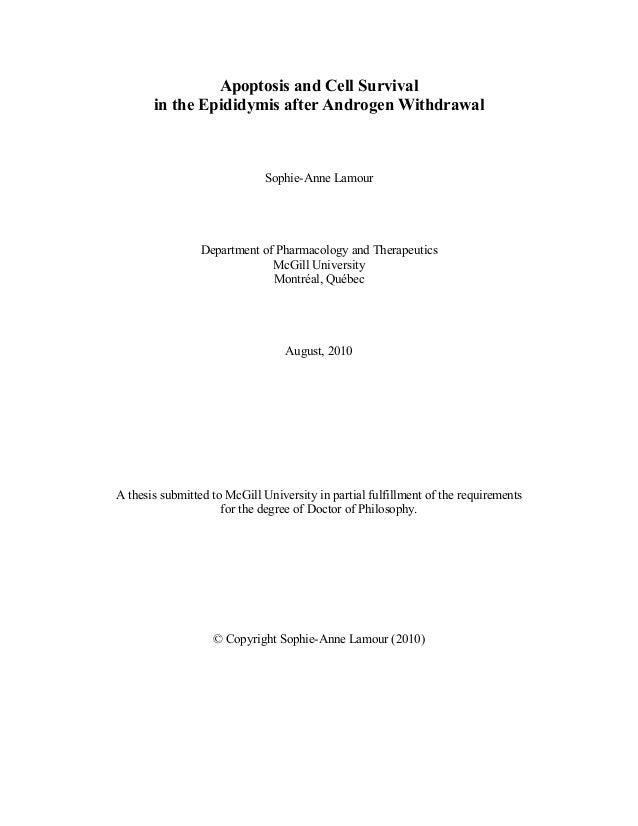 Dissertation sur l39amour philosophie
