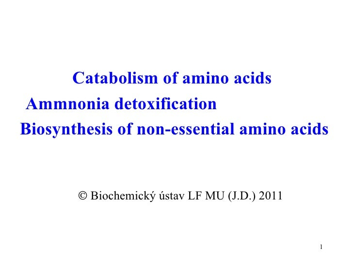 Catabolism of amino acids  Ammnonia detoxification  Biosynthesis of non-essential amino acids     Biochemický ústav LF MU...