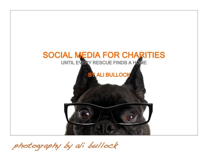SOCIAL MEDIA FOR CHARITIES   UNTIL EVERY RESCUE FINDS A HOME            BY ALI BULLOCK