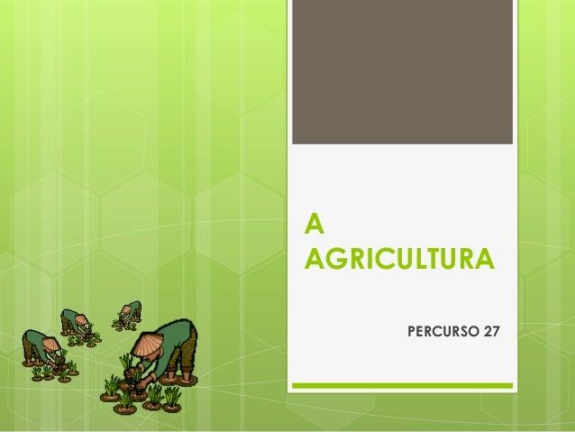 A AGRICULTURA  PERCURSO 27