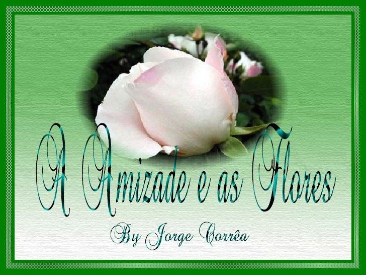 Simplicidade é ter todas as flores do mundo e          querer apenas uma rosa.