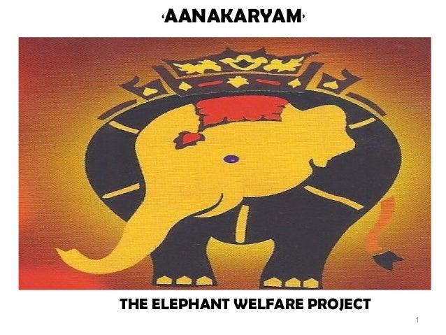 '   AANAKARYAM'THE ELEPHANT WELFARE PROJECT                               1