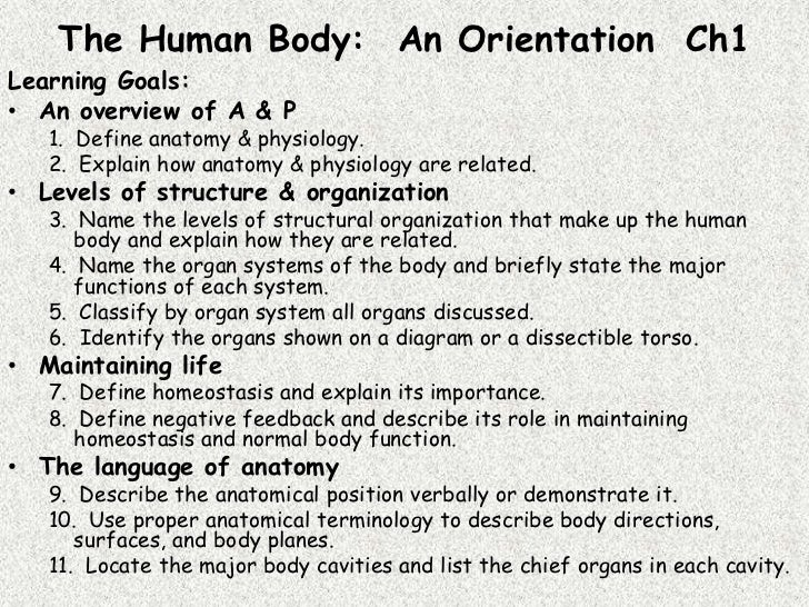 The Human Body: An Orientation Ch1Learning Goals:• An overview of A & P   1. Define anatomy & physiology.   2. Explain how...