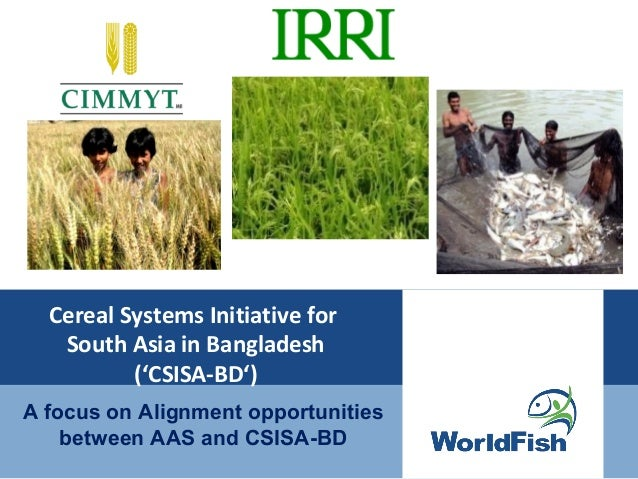 Cereal Systems Initiative forSouth Asia in Bangladesh('CSISA-BD')A focus on Alignment opportunitiesbetween AAS and CSISA-BD