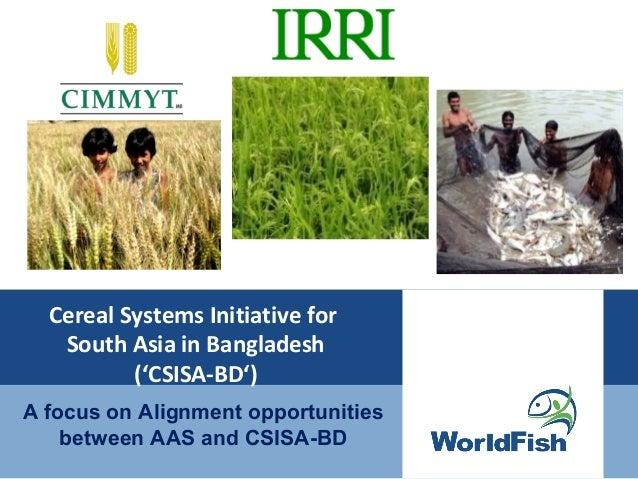 4. Aas csisa alignment workshop 6-7 may'13 by mokarram