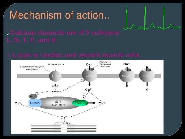 Heparin Mechanism Of Action Tolg Jcmanagement Co