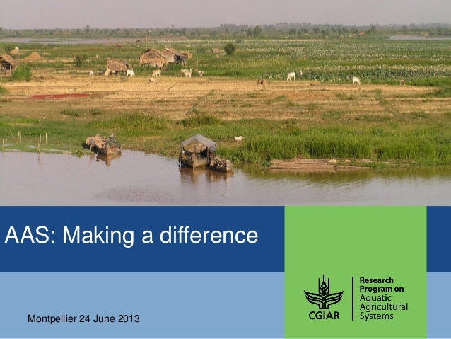 AAS – Presentation for Discussion with Donors and Partners – June 2013