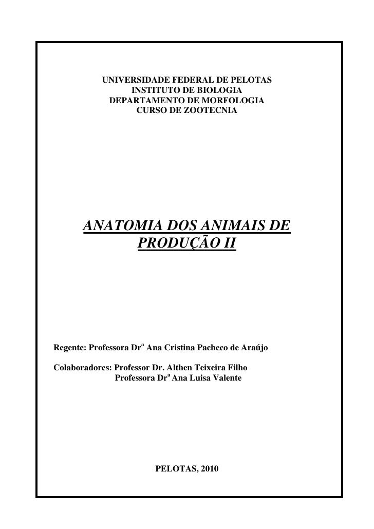 UNIVERSIDADE FEDERAL DE PELOTAS                 INSTITUTO DE BIOLOGIA             DEPARTAMENTO DE MORFOLOGIA              ...