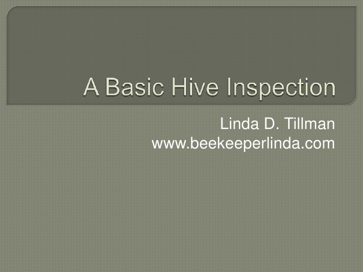 A Basic Hive Inspection