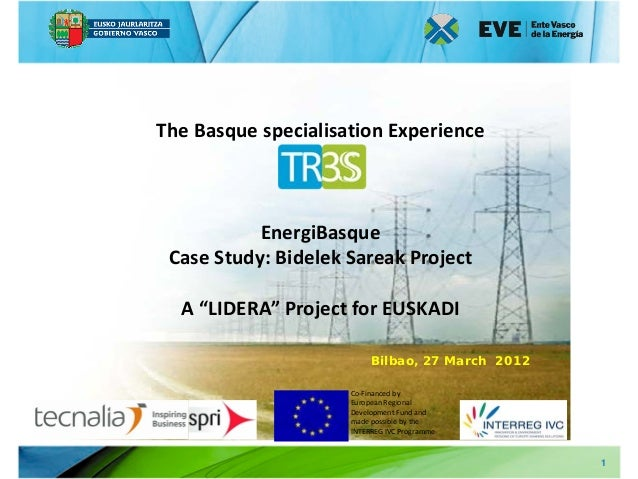 """The Basque specialisation Experience           EnergiBasque Case Study: Bidelek Sareak Project  A """"LIDERA"""" Project for EUS..."""