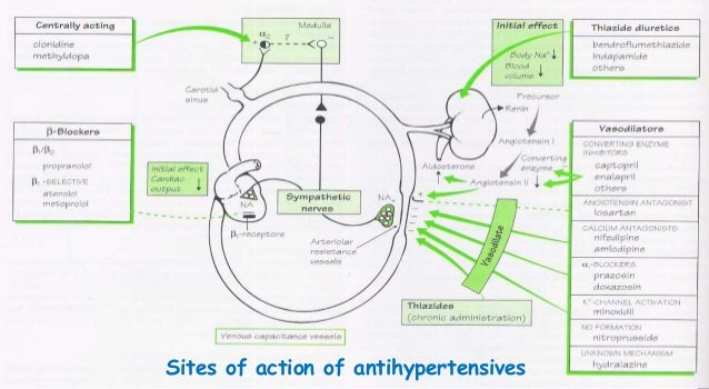 Hydrochlorothiazide-Spironolactone Hydrochlorothiazide-Spironolactone new picture