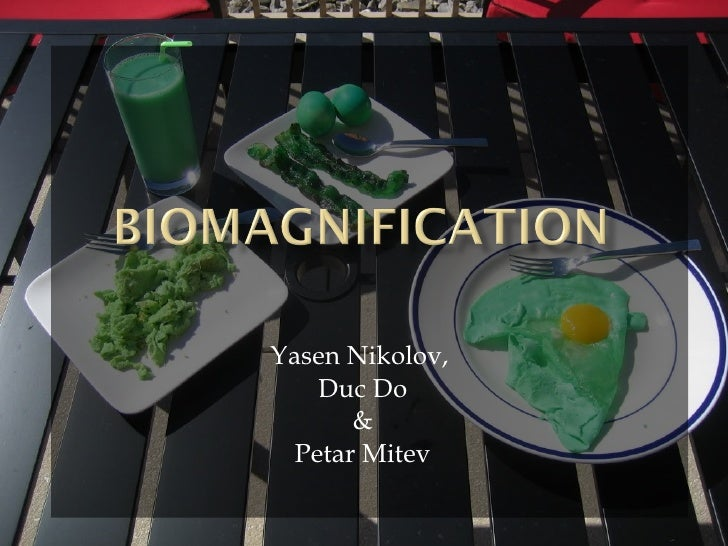 Ab biomagnification final edition yasen,duc,mitev