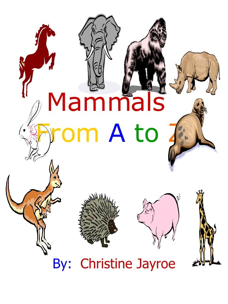 Mammals  From  A   to  Z By:   Christine Jayroe