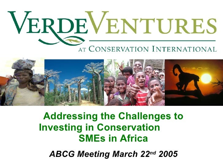 Addressing the Challenges to Investing in Conservation  SMEs in Africa ABCG Meeting March 22 nd  2005