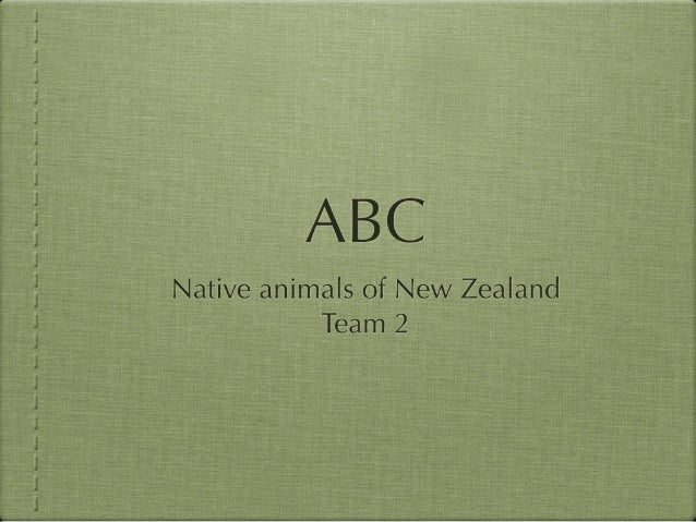 ABC of Native Plants and Birds of New Zealand Team 3