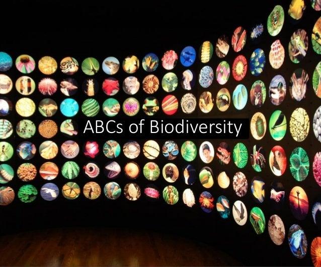 ABCs of Biodiversity