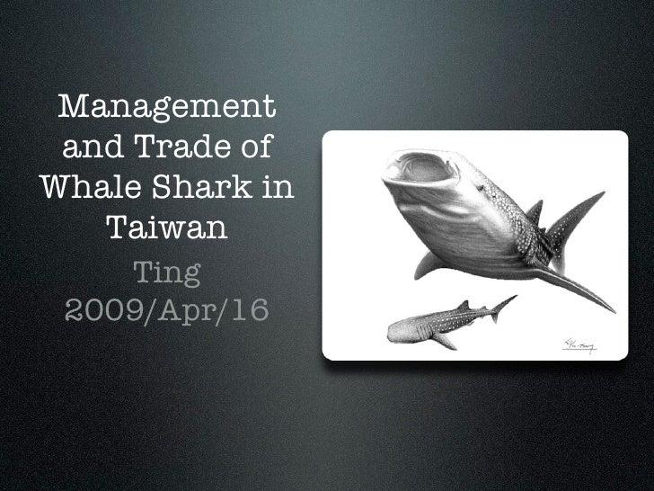 Abc Whale Shark
