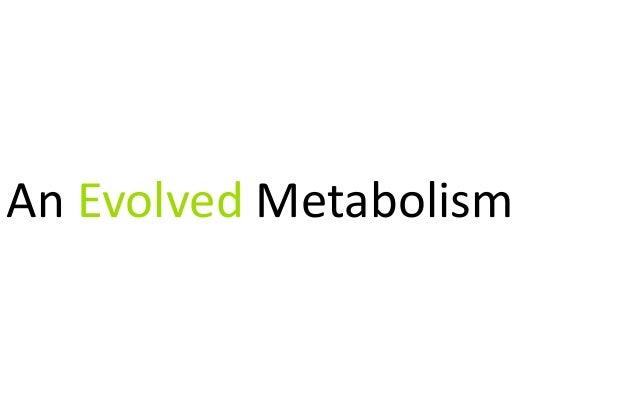 An Evolved Metabolism