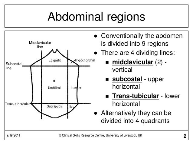Abdominal Exam on abd organs