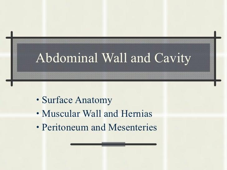 Abdominal Wall and Cavity <ul><li>Surface Anatomy </li></ul><ul><li>Muscular Wall and Hernias </li></ul><ul><li>Peritoneum...