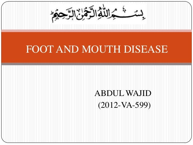 ABDUL WAJID (2012-VA-599) FOOT AND MOUTH DISEASE